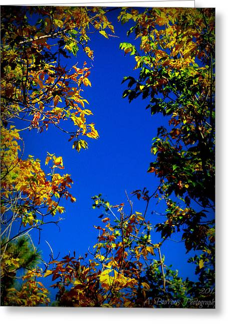 Prescott Greeting Cards - Through the Fall Foliage Greeting Card by Aaron Burrows