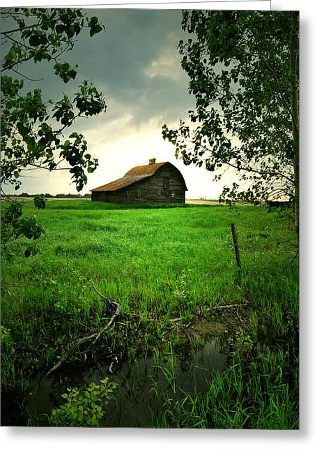 Edmonton Photographer Greeting Cards - Through The Longing  Greeting Card by Jerry Cordeiro
