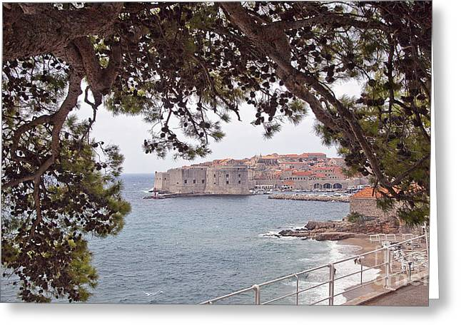 Dubrovnik Greeting Cards - Through the Trees in Dubrovnik 2 Greeting Card by Madeline Ellis