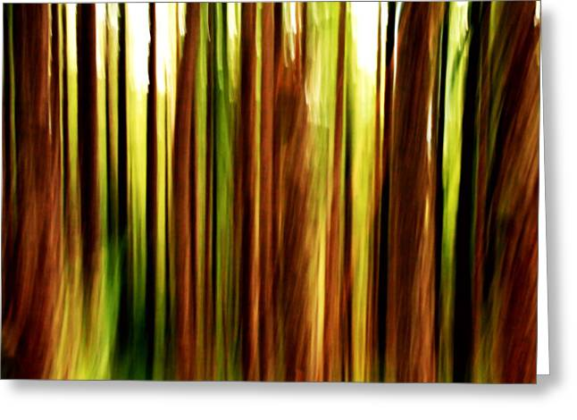 Burned Clay Photographs Greeting Cards - Through The Woods Greeting Card by Aimee Reutercrona