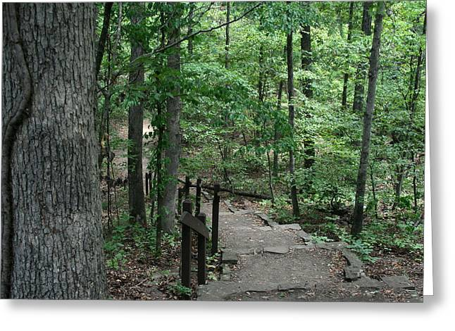 Devils Den Greeting Cards - Through The Woods Greeting Card by CGHepburn Scenic Photos