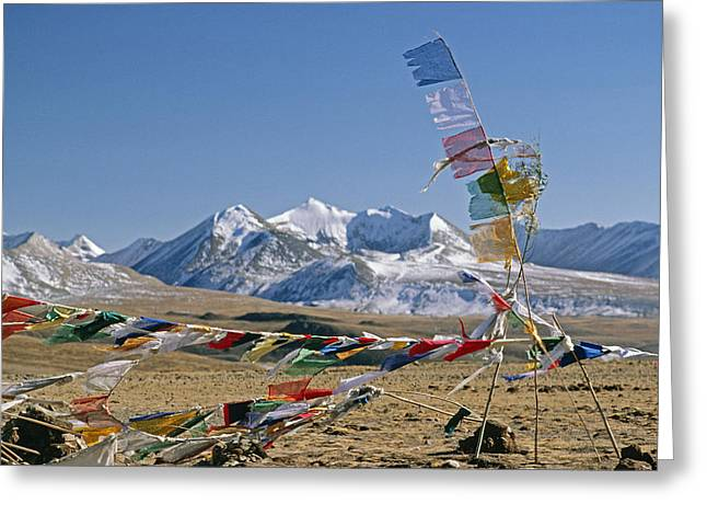 Tibetan Buddhism Greeting Cards - Tibetan Buddhist Prayer Flags Atop Pass Greeting Card by Gordon Wiltsie