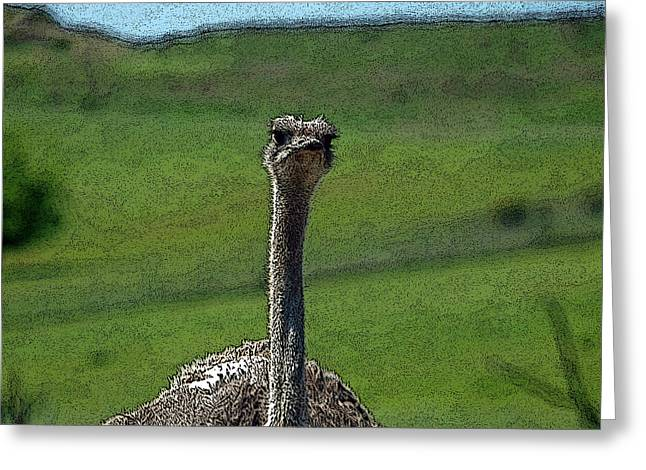 Ostrich Feathers Greeting Cards - Ticket Please Greeting Card by Teri Schuster