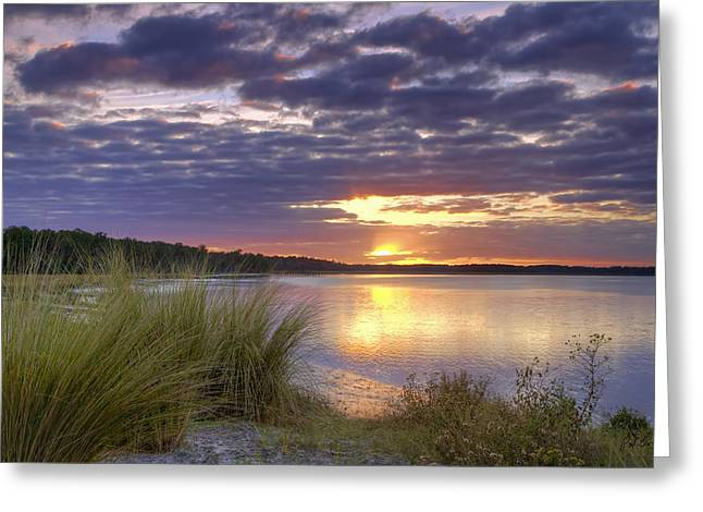 Beaufort Greeting Cards - Tidal Estuary Greeting Card by Phill  Doherty