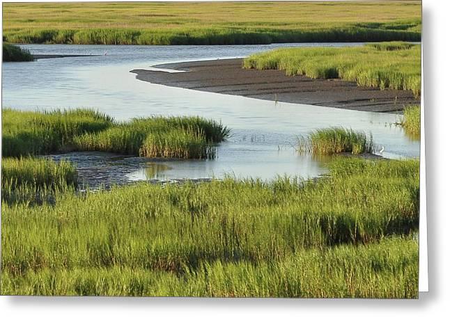 Al Powell Photography Usa Greeting Cards - Tidal Marsh Greeting Card by Al Powell Photography USA