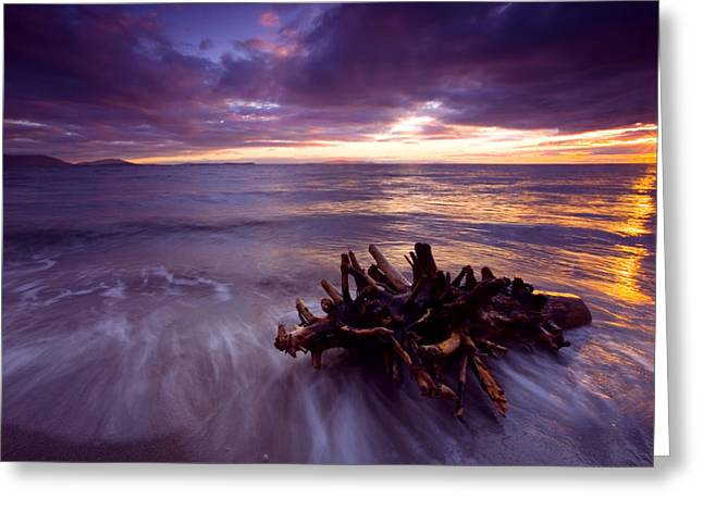 Juan Greeting Cards - Tide Driven Greeting Card by Mike  Dawson