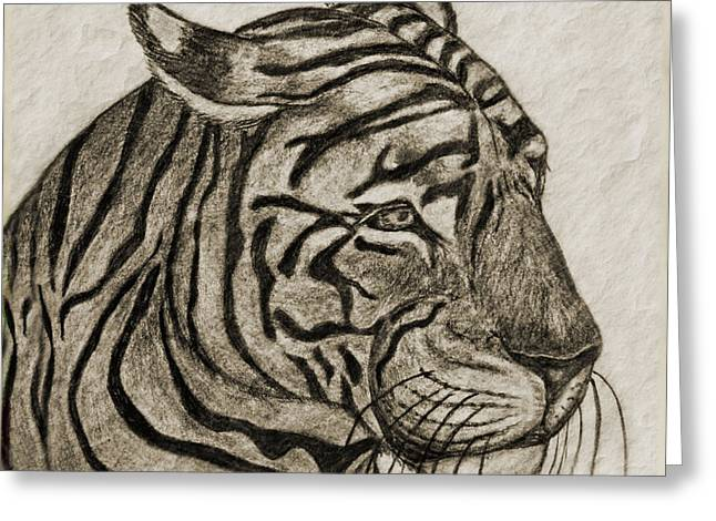 Photomanipulation Drawings Greeting Cards - Tiger IV Greeting Card by Debbie Portwood