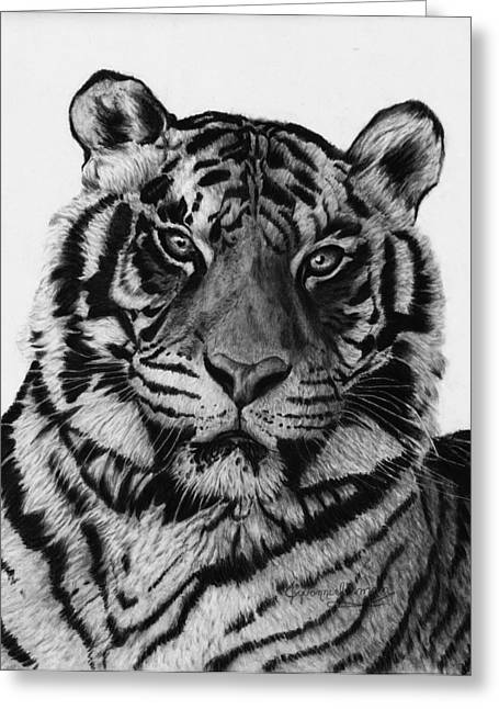 Jyvonne Inman Greeting Cards - Tiger Greeting Card by Jyvonne Inman