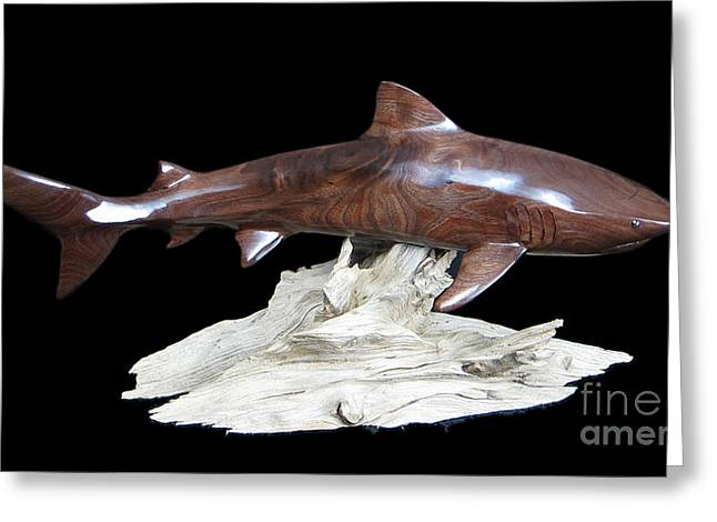 Marine Life Greeting Cards - Tiger Shark Greeting Card by Kjell Vistnes