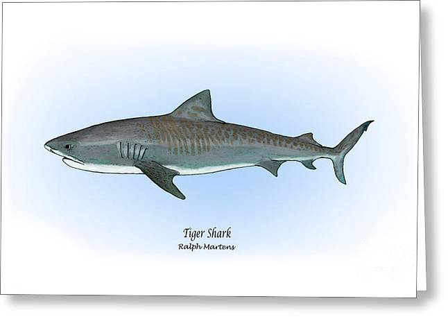 Tiger Drawings Greeting Cards - Tiger Shark Greeting Card by Ralph Martens