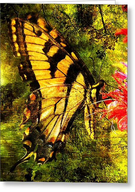 J Larry Walker Greeting Cards - Tiger Swallowtail Butterfly Happily Feeds Greeting Card by J Larry Walker