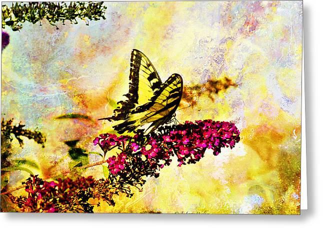 Butterfly Digital Art Greeting Cards - Tiger Swallowtail Feeding Greeting Card by J Larry Walker
