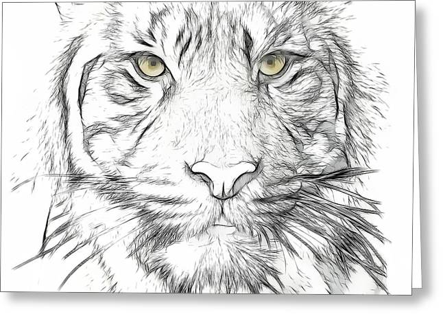 Tilly Art Greeting Cards - Tiger Greeting Card by Tilly Williams