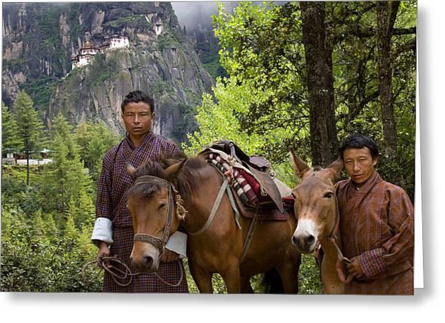 Tigers Nest Guides Greeting Card by Ken Hayden