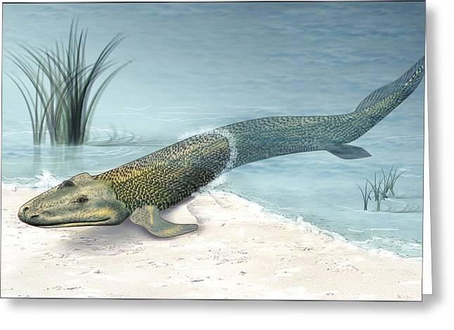 Missing Greeting Cards - Tiktaalik Prehistoric Fish, Artwork Greeting Card by National Science Foundation