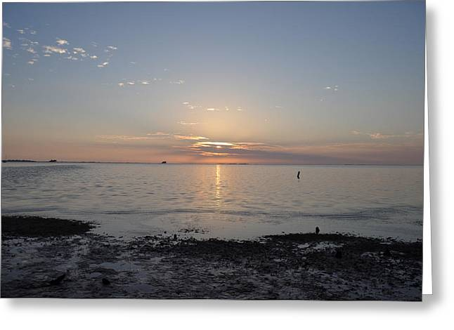 St Petersburg Florida Greeting Cards - Till The End of the Day Greeting Card by Bill Cannon