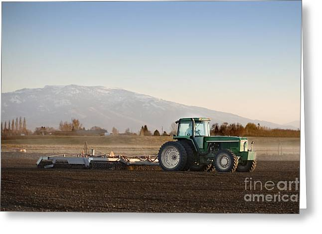 Harrow Greeting Cards - Tilling the Soil Greeting Card by Cindy Singleton