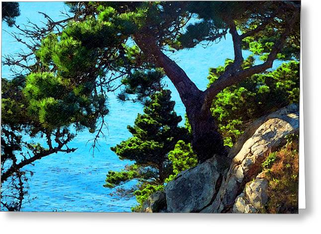 Seacape Greeting Cards - Timber Cove in Sonoma Coast Greeting Card by Russ Harris