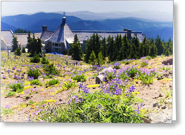 Timberline Greeting Cards - Timberline Lodge at Mt Hood Greeting Card by Vicki Jauron