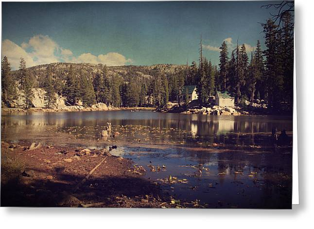 Ebbetts Pass Digital Art Greeting Cards - Time Always Reveals Greeting Card by Laurie Search