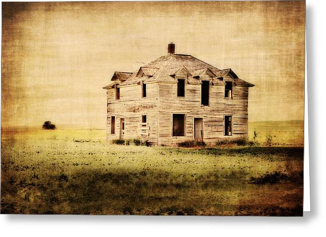 Time Forgotten Greeting Card by Julie Hamilton