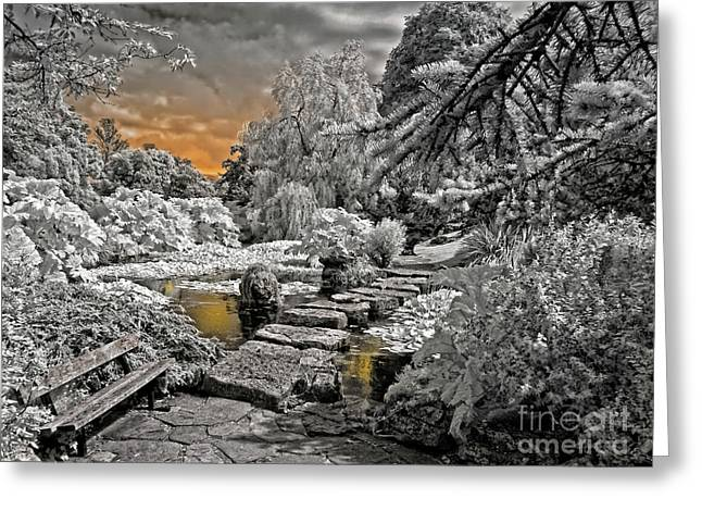 Infer Greeting Cards - Time to Rest - Infrared Photography Greeting Card by Steven Cragg