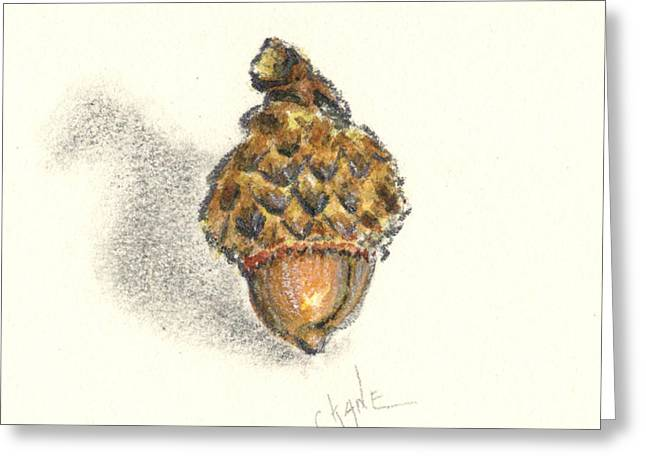 Acorn Greeting Cards - Tiny Acorn Greeting Card by Christine Camp