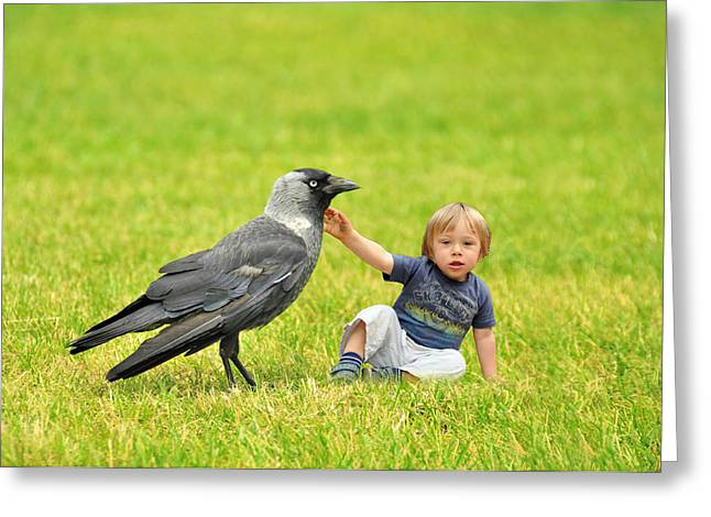 Beautiful People Greeting Cards - Tiny boy playing with a crow Greeting Card by Jaroslaw Grudzinski