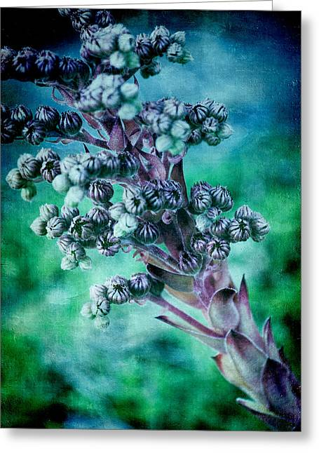 Pink And Green Hues Greeting Cards - Tiny Buds Greeting Card by Bonnie Bruno