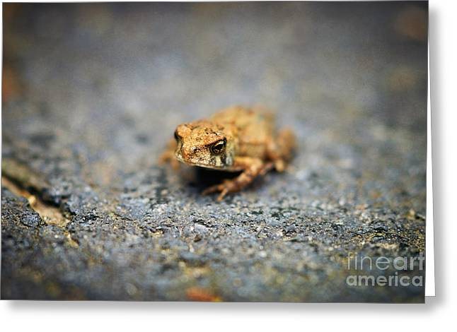 Quirky Greeting Cards - Tiny Toad Big Attitude Greeting Card by Susan Isakson