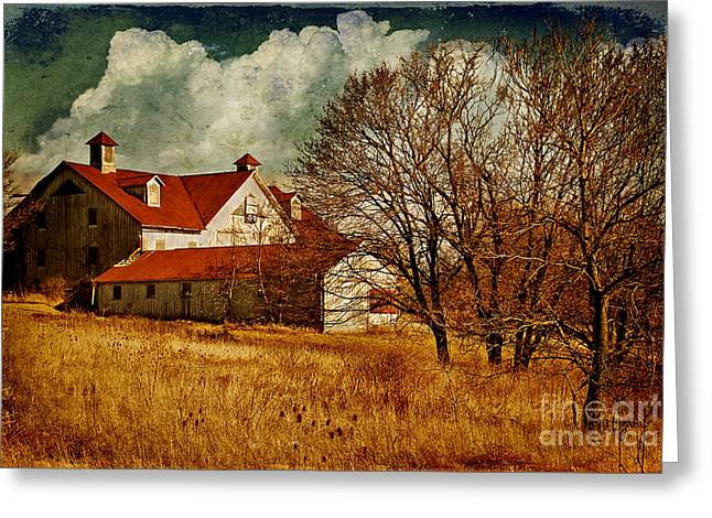 Barn In Winter Greeting Cards - Tired Greeting Card by Lois Bryan