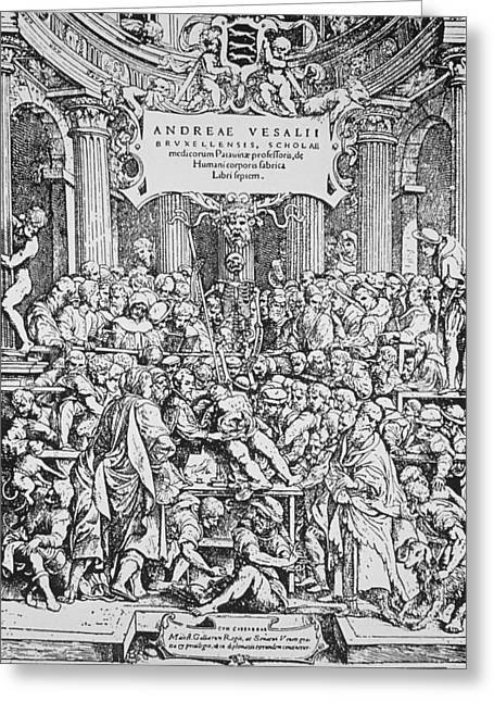 Historical Images Greeting Cards - Title Page To Vesalius Book On Anatomy Greeting Card by Dr Jeremy Burgess