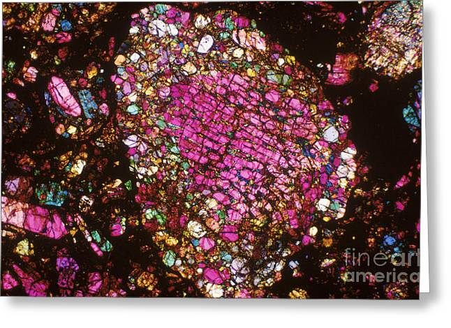 Tlm Greeting Cards - Tlm Of Chondrite Greeting Card by Michael W. Davidson
