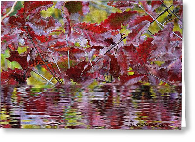 Tn Digital Art Greeting Cards - TN Fall Water Greeting Card by EricaMaxine  Price