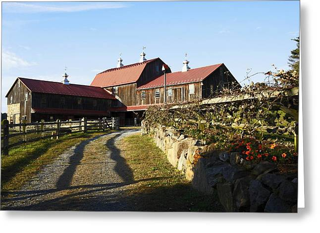 Weathervane Greeting Cards - To the Barn Greeting Card by Sally Weigand