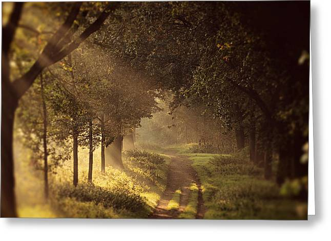 Soft Light Greeting Cards - To the Shire Greeting Card by Danny Van den Groenendael