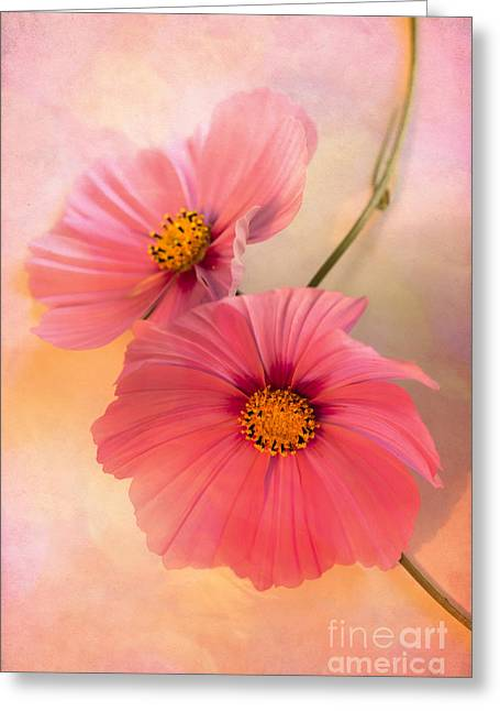 Together Greeting Card by Jan Bickerton