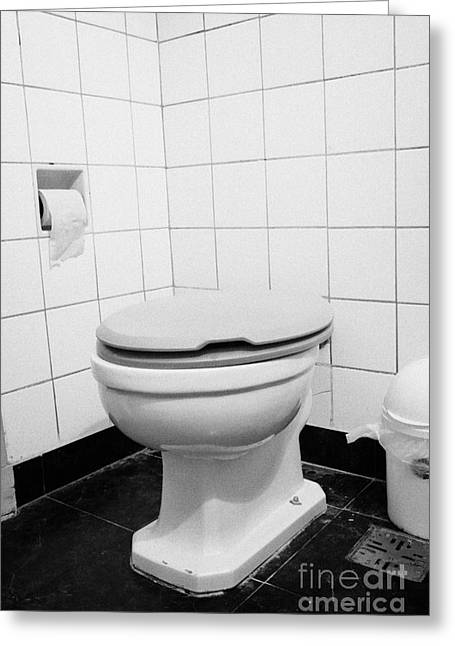 Domestic Bathroom Greeting Cards - Toilet Seat Down In Bathroom  Greeting Card by Joe Fox