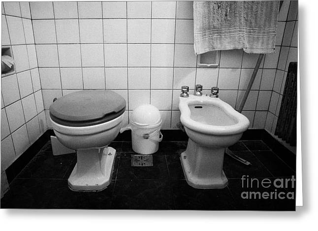 Toilet Bowl Greeting Cards - Toilet With Closed Lid And Bidet In A Run Down Bathroom Greeting Card by Joe Fox