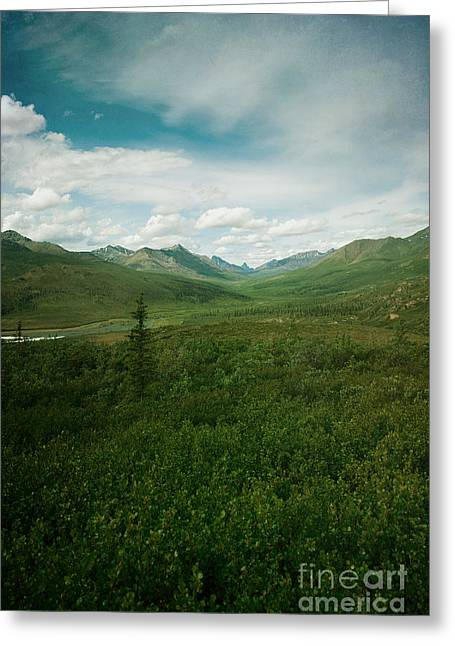 Mountain Valley Greeting Cards - Tombstone Mountain Greeting Card by Priska Wettstein