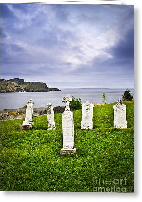 Ocean Shore Greeting Cards - Tombstones near Atlantic coast in Newfoundland Greeting Card by Elena Elisseeva