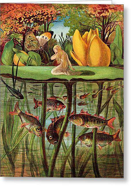 Tree Leaf On Water Greeting Cards - Tommelise very desolate on the water lily leaf in Thumbkinetta  Greeting Card by Hans Christian Andersen and Eleanor Vere Boyle