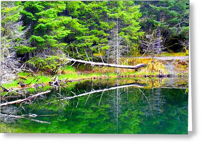 Tonga Greeting Cards - Tongass Pond Greeting Card by Randall Weidner