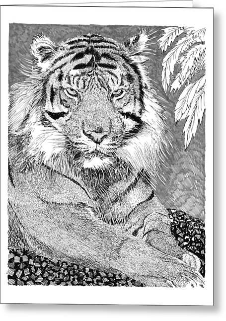 Bengal Drawings Greeting Cards - Tony the Tiger Greeting Card by Jack Pumphrey