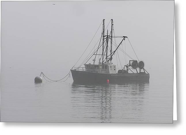 Maine Shore Greeting Cards - Too Foggy To Fish Greeting Card by Sven Migot