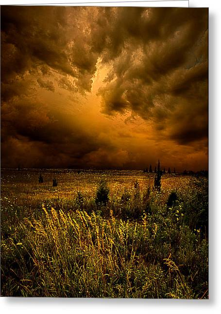 Geographic Greeting Cards - Too Little Too Late Greeting Card by Phil Koch