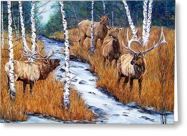 Stream Greeting Cards - Too Much Bull Greeting Card by Patti Gilley