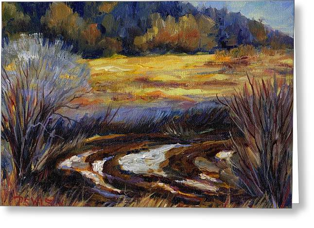 Plowed Fields Greeting Cards - Too Wet to Plow Greeting Card by Peggy Wilson