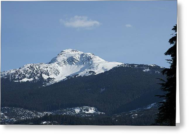 Bonnes Eyes Fine Art Photography Greeting Cards - Top of the Mountain Greeting Card by Bonnes Eyes Fine Art Photography