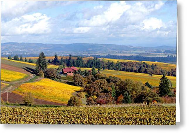Grapevines Digital Art Greeting Cards - Top of the World Greeting Card by Margaret Hood